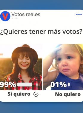 votos para encuestas